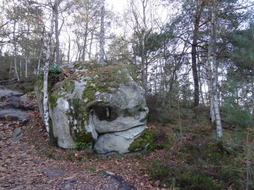 DSC03110 Fontainebleau - 25 bosses