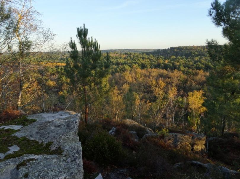 DSC03134 Fontainebleau - 25 bosses