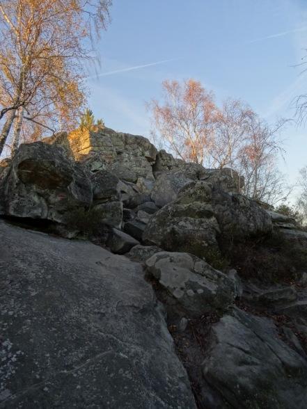 DSC03136 Fontainebleau - 25 bosses