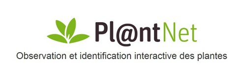 plannet.PNG-001