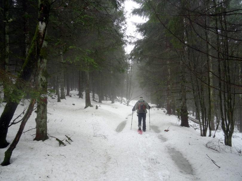 neigefraiche