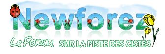 logo_newforez